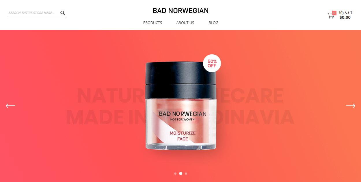 portfolio-detail-badnorwegian-img-01