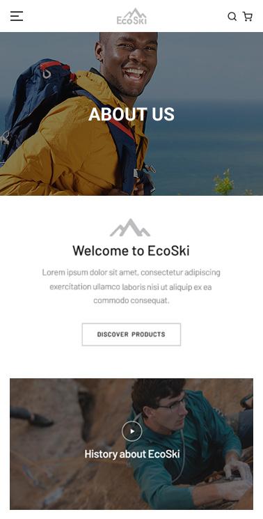 portfolio-detail-ecoski-12